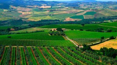 Col d'Orcia 2016 Brunello di Montalcino Release  -  Wine Oh TV