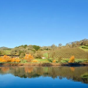 Saracina Vineyards: Learn About Mendocino Wine - Wine Oh TV
